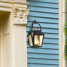 Valley Forge 1-Light Outdoor Wall Lantern