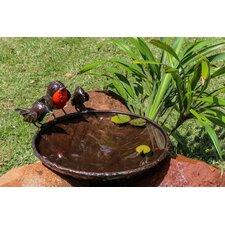 Vogeltränke Robins