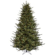 6.5' Itasca Frasier Artificial Christmas Tree with 600 LED Warm White Lights with Stand