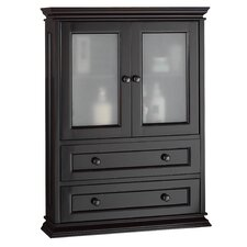 "Hyde 23"" W x 31.13"" H Wall Mounted Cabinet"
