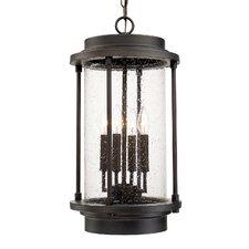 Briana 4-Light Outdoor Hanging Lantern