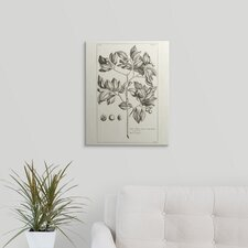 'Tropical Leaf Study II' Graphic Art on Wrapped Canvas