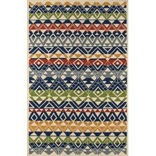 Barron Hand-Hooked Outdoor Area Rug