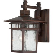 Hallowell 1-Light Outdoor Wall Lantern