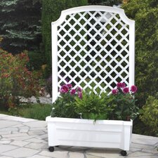 Rectangular Plant Box with Trellis