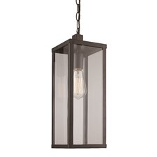 Pinon 1-Light Outdoor Hanging Lantern