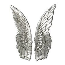 2 Piece Angel Wings Wall Décor Set