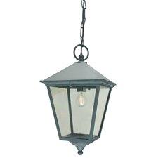 Turin 1 Light Outdoor Hanging Lantern