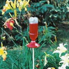 2-Pack Soda Bottle Hummingbird Feeders