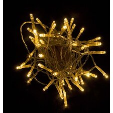 Decorative Battery Operated 40 Light String Lighting