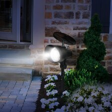 Landscape Lighting You Ll Love Wayfair