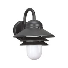 Polycarbonate 1-Light Outdoor Barn Light