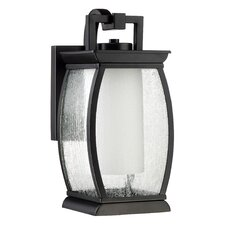 Vitiello 1-Light Outdoor Wall Lantern