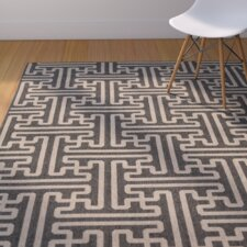 Delaney Black Indoor/Outdoor Area Rug