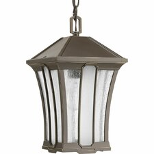 Twain 1-Light Outdoor Hanging Lantern