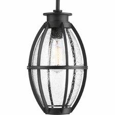 Pier 33 1-Light LED Outdoor Hanging Lantern