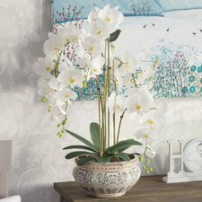 Orchid Planter Faux Plant