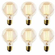Thomas Edison Globe Incandescent Vintage Filament Light Bulb (Set of 6)