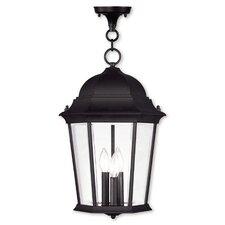 Busse 3-Light Outdoor Hanging Lantern
