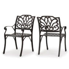 Finlayson Outdoor Dining Arm Chair (Set of 2)