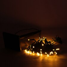 Angle 50 Novelty String Lights