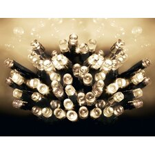 50 Light LED Fairy Light