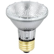 38W Halogen Light Bulb (Pack of 2)