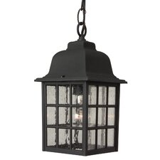 Tolham 1-Light Outdoor Hanging Lantern