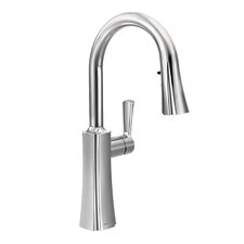 Etch Single Handle Pull Down Kitchen Faucet