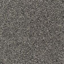 """Cutler 24"""" x 24"""" Carpet Tile in Blarney Stone"""