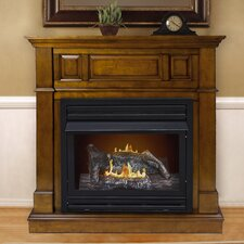 Pauline Dual Fuel Vent Free Wall Mount Gas Fireplace