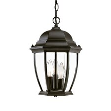 Drumkeeran 3-Light Outdoor Hanging Lantern