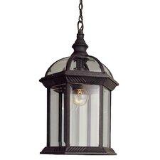Sarah 1-Light Outdoor Hanging Lantern