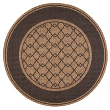 Connolly Honey Indoor/Outdoor Area Rug