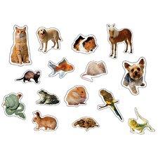 Pets Photographic Sticker