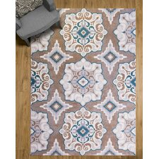 Brown Amp Tan Rugs You Ll Love Wayfair