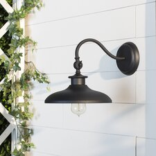 Tennyson 1-Light Outdoor Barn Light