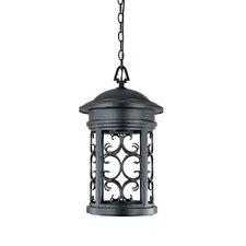 Ellington 1-Light Outdoor Hanging Lantern