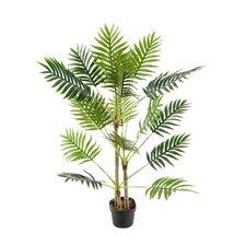 100cm Palm Tree in Pot