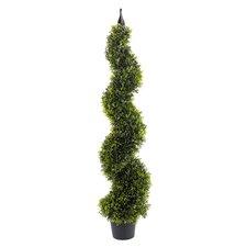 120cm Spiral Boxwood Topiary in Pot