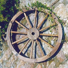 Garden Cartwheel Wall Decor