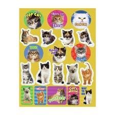 Motivational Cats Theme Sticker (Set of 4)