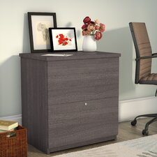 Benjamin Standard 2-Drawer Lateral File