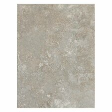 Sandalo 9'' x 12'' Ceramic Field Tile in Castillian Gray