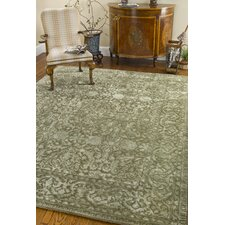 Silk Road Sage Area Rug