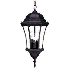 Brynmawr 3-Light Outdoor Hanging Lantern