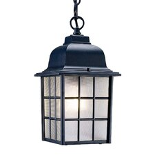Nautica 1-Light Outdoor Hanging Lantern