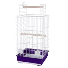 Gisele Parrot Cage