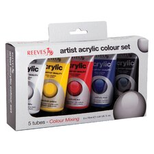 Acrylic Paint Color (Set of 5)