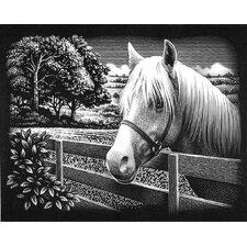 Pony Scraperfoil